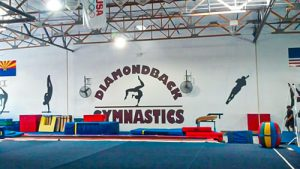 Wall Mural for Diamondback Gymnastics